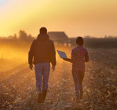 Farmers walking on field. Farmer women with laptop and landowner walking and talking on field with tractor working in background at sunset Stock Photography