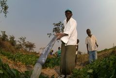 Farmers Watering Crops in Zimbabwe Stock Images