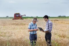 Farmers on wheat harvest Royalty Free Stock Photography