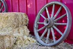 Farmers Wheel Stock Photo