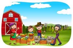 Farmers Stock Photos
