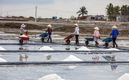 Farmers working on salt field Stock Photo