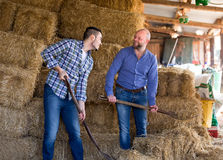 Farmers working in a shed Royalty Free Stock Photos