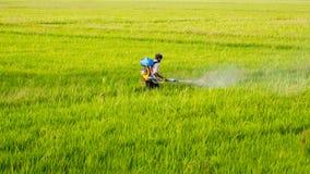 FarmerSpraying杀虫剂 免版税库存图片
