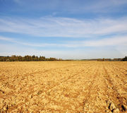 Farmfield in autumn Royalty Free Stock Images
