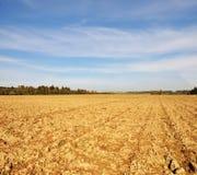 Farmfield in autunno Immagini Stock Libere da Diritti