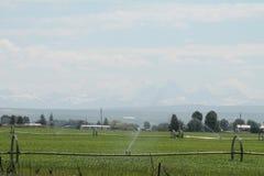 Farmground с tetons в взгляде Стоковые Фотографии RF