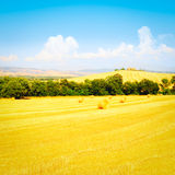 farmhouse imagens de stock royalty free