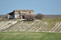 farmhouse Obraz Stock