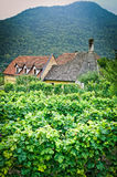 Farmhouse in an austrian Vineyard Royalty Free Stock Photography