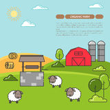 Farmhouse banner for agricultural products advertise Flat linear vector. Farmhouse horizontal banner. Farm landscape with barn, sheeps. Concept for farmer Royalty Free Stock Photography
