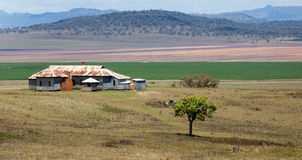 Farmhouse in beautiful location. Liverpool plains prime farmland near Quirindi, NSW, Australia Royalty Free Stock Images