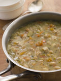 Farmhouse Chicken and Vegetable Soup Stock Image