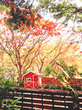 Farmhouse. Farm view with red flower tree background Stock Image