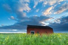Farmhouse on flowering meadow Stock Image