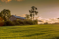 Farmhouse. In the meadows during sunset Royalty Free Stock Images