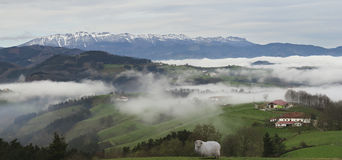 Farmhouse with mists and clouds in the Goiherri Gipuzkoa with Urbia saw the bottom. Royalty Free Stock Image
