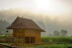 Farmhouse in morning. Farmhouse in the fog on a warm, sunny morning Stock Photos