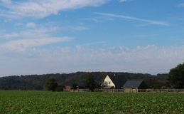 Farmhouse in Normandy, France with crops in the field stock photo