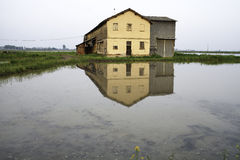 Farmhouse reflected in a paddy field. Color image Stock Image