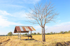 Farmhouse in rural areas. Farmhouse located in the field of rural areas in Thailand Royalty Free Stock Photography