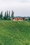 Farmhouse in Southern Styria. With Vineyard and copyspace royalty free stock photo