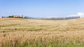 Farmhouse in Tuscany countryside Royalty Free Stock Image