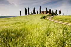 Farmhouse in Tuscany near Pienza, Italy Stock Images