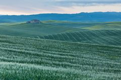 Farmhouse in Tuscany at sunrise Stock Image