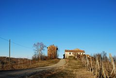 Farmhouse and vineyard. Landscape with farmhouse and vineyard in the Oltrepo Pavese in winter, Pavia, Lombardy, Italy royalty free stock photo