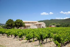 The farmhouse with vineyard. Provence, France royalty free stock photo