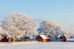 Farmhouse in a winter landscape. Farmhouse with frost and snow in the winter Stock Photos