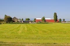 Farmhouses and fields Stock Photos