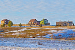 Farmhouses and grazing horses on farm wintry field. Sunset throws long shadows on the snowy countryside with farmhouses and grazing horses Royalty Free Stock Photos