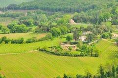 Farmhouses and vineyards of Tuscany Stock Image