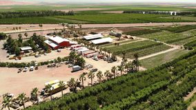 farming Аграрный фрукт и овощ c сельскохозяйственного угодья растя стоковое фото rf