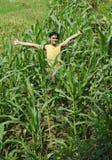 Farming. Man at corn farming cheerful royalty free stock photos