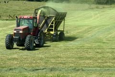 Farming Royalty Free Stock Image
