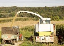farming stock foto