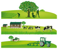 Farming and agricultural landscapes. Illustrated set of green farming and agricultural landscapes isolated on white background Stock Photography