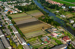Farming, Agriculture Aerial Photography in Thailand Royalty Free Stock Images