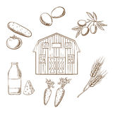 Farming and agriculture sketched icons Royalty Free Stock Image