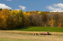 Farming in Autumn. Farmer cutting and harvesting the corn field in autumn Stock Photo