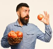 Farming and autumn crops concept. Guy presents homegrown harvest. Farmer with surprised face holds red apple. Man with. Beard holds wicker bowl with apple stock images