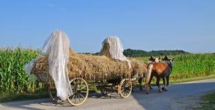 Farming in Chiemgau,Bavaria,Germany Royalty Free Stock Images