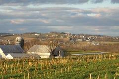 Farming Community Royalty Free Stock Image