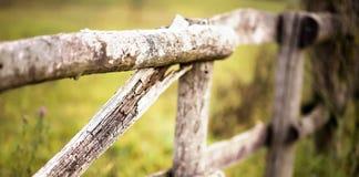 Farming concept banner Stock Photography