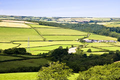 Farming countryside. Rollling green hills of Devon depicting a typical mixed farming area Royalty Free Stock Photo