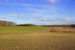Farming countryside Stock Photography