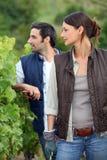 Farming couple in field Stock Photos